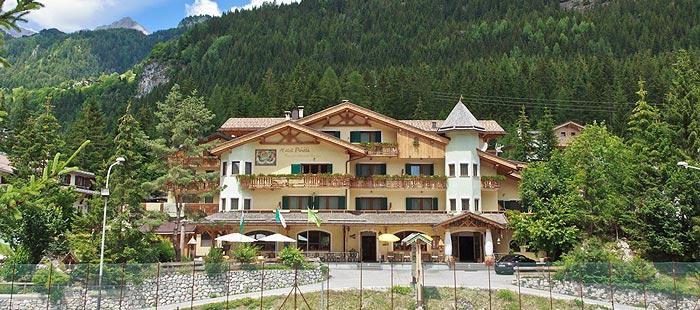 Pineta Haus2