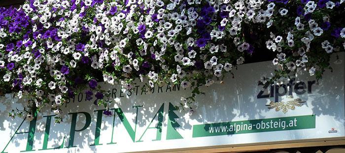Alpina Hotel Blumen