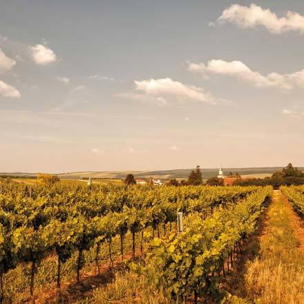Urlaubsgutscheine für Ihren Kurzurlaub in Niederösterreich
